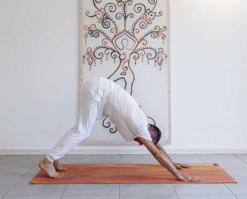 yoga in estate, yoga su misura, cane a testa in giù